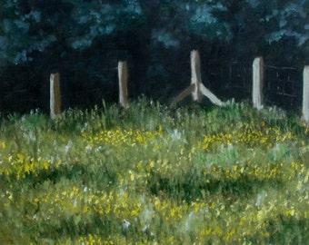 Buttercup Field - Evening