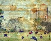 Rustic Farm Photograph Rustic Art Print Vintage Style Photo Cow Photograph 8x10 Rustic Wall Art