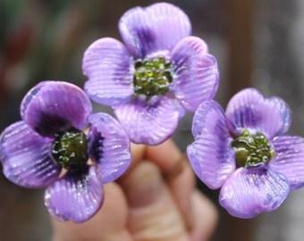 fancy poppy flowers on pins