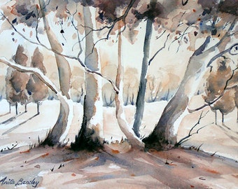 "Original watercolour painting ""Bushland Light, Flinders Ranges, SA"""