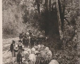 "Peter Moran ""The Flock"" 1886 - Pen Signed"