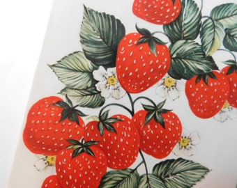 Vintage Strawberry Kitschy Wall Decor