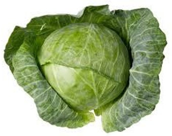 CABBAGE VEGETABLE SEEDS 50 Fresh seeds ready to plant in your garden