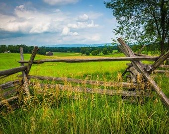 Fence and tree in a field at Antietam National Battlefield, Maryland.   Photo Print, Stretched Canvas, or Metal Print.