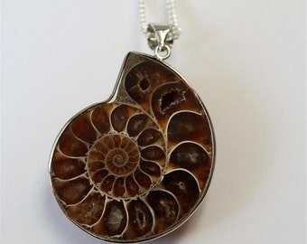 """""""Fossil"""" necklace"""