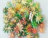 Mini Pot Leaf 4 pcs Laser Cut Cab