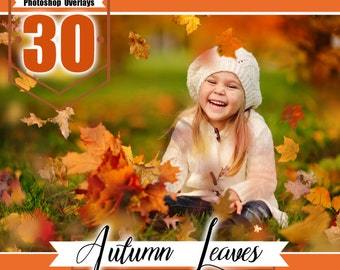 30 falling leaves photoshop overlays, autumn overlay, autumn leaves, fall overlays, wedding baby photo, realistic effect, PNG files