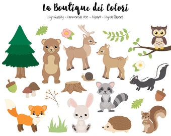 Woodland Animals Clipart, Cute Digital Graphics PNG, Fox, bear, bunny, deer, squirrel, Forest, Woodland party Clip art, Commercial Use