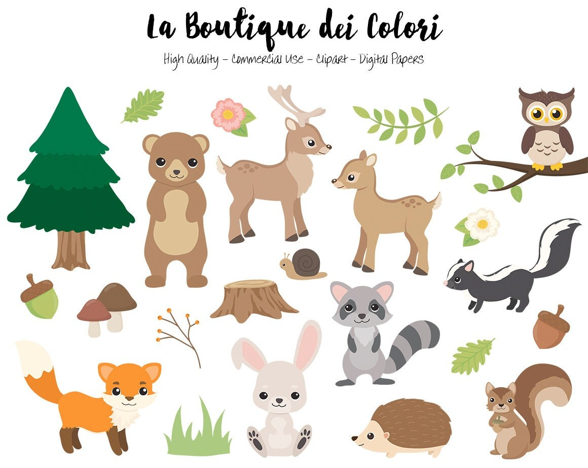 Woodland Animals Clipart Cute Digital Graphics Png Fox