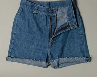 Levis Shorts-Size 2