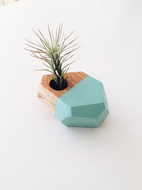 Geometric mahogany air plant holder geode planter by for Geometric air plant holder