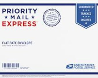 EXPRESS MAIL UPGRADE for U S A Orders Only 16.95 Overnight or 2nd Day Air Domestic Only Flat Rate Envelope Guaranteed Tracked Insured
