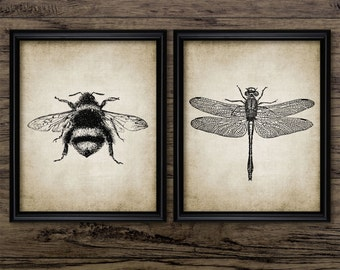 Insect Print Set of 2 - Dragonfly - Bumble Bee - Entomology Art - Digital Art - Printable Art - Set Of Two Prints #63 - INSTANT DOWNLOAD