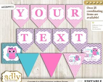 Girl Owl DIY Personalizable Banner Printable for Baby Owl Shower, birthday– Purple -aa52bPPT11