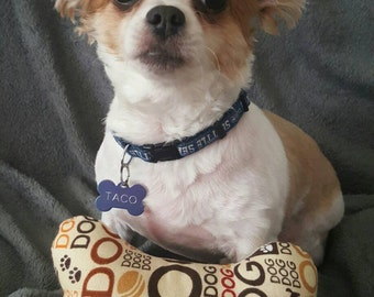 Dog Squeeker Bone Toy
