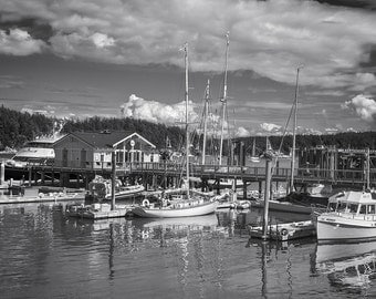 Friday Harbor #2, San Juan Islands, 2015: A Black and White Photograph 10x15