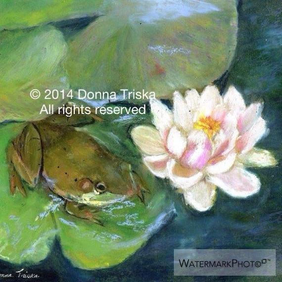 Frog Lilly Landscape fine art print Pond green pink blue