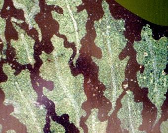 EH 6 Oak Leaves