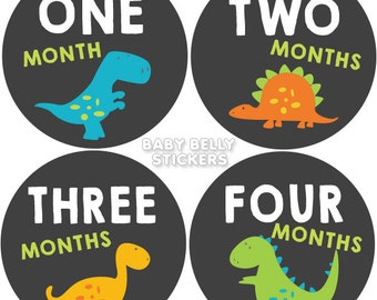 Baby Month Stickers, Monthly Baby Stickers, Monthly Milestone Stickers, Baby Monthly Stickers, Baby Belly Stickers, Dinosaur Boys