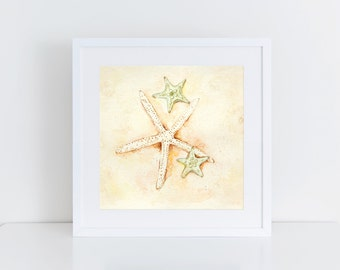sea star, starfish, watercolor print, ocean life, aqua ocean, sand dollar, beach art, shells, treasure