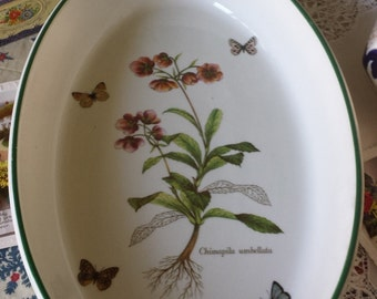 Pretty Itlian Oval Ceramic Serving Dish Chimapila Umbellata and Butterflies