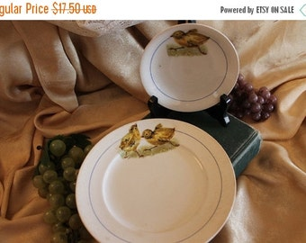 SALE Stinthal China of Crooksville, Ohio Chick Plate and Saucer