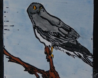 Hen harrier Lino print by Ann-Marie Ison (50% donated to charity)