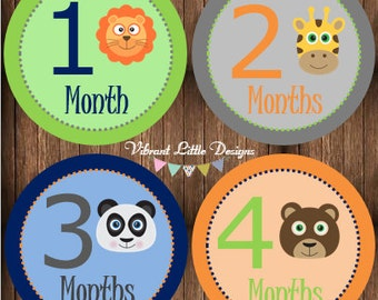 Baby Boy Monthly Stickers, Milestone Stickers, Month Stickers, Baby Month Stickers, Baby Stickers, Jungle, Animals #62