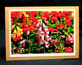 "All occasion photo card ""Foxglove"""