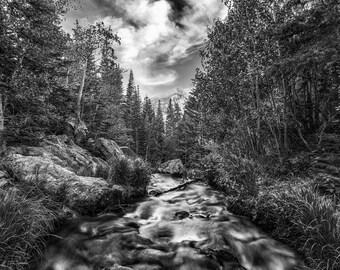Photo Art - Mountain Photography - Mountain Stream - Black & White