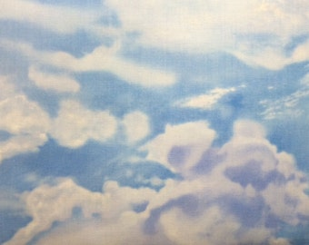 Timeless Treasures SUMMER SKIES 100% Cotton Premium Quilt Fabric - sold by 1/2 yard