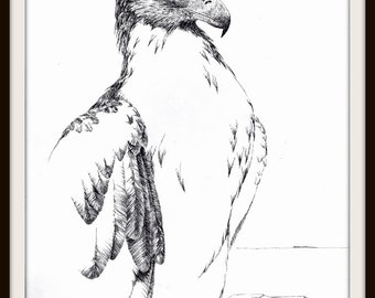 Golden Eagle Book Print (1984), Black White Picture, Frameable Wall Art, Bird Watcher Gift, Fierce Wild Masculine, Father's Day Gift, Rustic