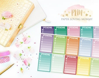 20 Spending Sidebar Stickers | Planner Stickers designed for use with the Erin Condren Life Planner | 1118