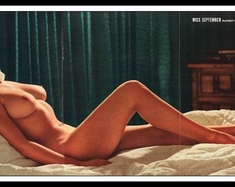 "Mature Playboy September 1966 : Playmate Centerfold Dianne Chandler Gatefold 3 Page Spread Photo Wall Art Decor 11"" x 23"""