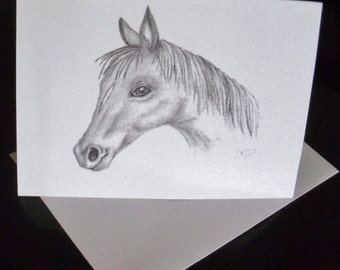 Horse Greeting Card/ Horse Note Card/ Stationery / Greeting Card Set / Blank Cards / Just Because Cards / Art  N25
