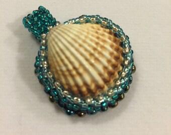 Seashell charm. Natural Sea shell. Aqua blue sea shell.