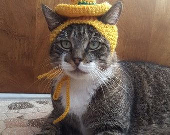 Sombrero Cat Hat, knit hat for cat, cat costume, halloween