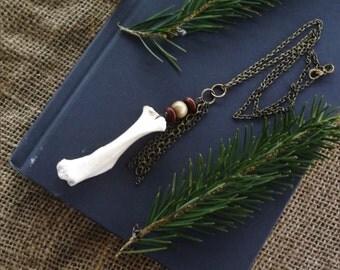 Bone Jewelry - Porcupine Bone Necklace - Taxidermy Necklace -