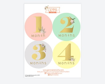 The Mila | Baby Stickers Baby Girl  First Year Sticker Set 12 Months