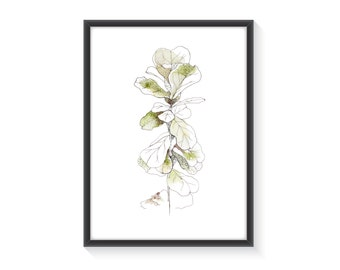 Botanical Art - Watercolor Plant - House Plant Art - Fig Tree Print