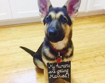 Engagement anouncement dog sign