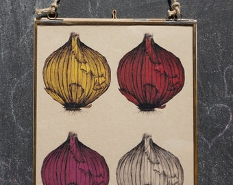 4 onions