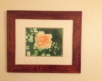 Dorothy's Rose