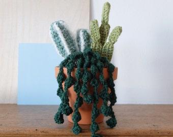 Crochet Succulent Collection
