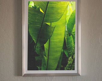 Green Tropical Leaf,Tropical Decor,Leaf Photo,Leaf Print,Modern Contemporary Wall Art,Color Photography,Instant Download,Juicy Green