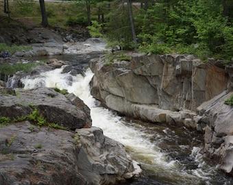 Where the River Runs Wild