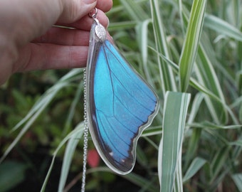Real Blue Morpho Wing, Real Wing Necklace, Blue Butterfly Necklace, Morpho Menelaus Necklace, Entomology, Butterfly Wing Encased in Resin