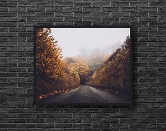 Autumn Road Photo - Misty Road Photo - Road Photo - Fall Photo - Misty Photo - Nature - Autumn Wall Art - Living Room Decor - Photography