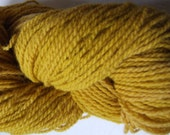 Turmeric Spice. Maine sheep wool natural dye yellow orange handdyed knitting crochet