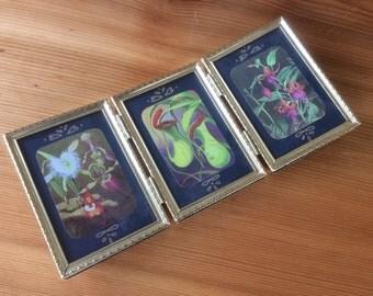 Botanical Print Set, Brass Standing Frame. Vintage Botanical Illustration Triptych: Pitcher Plant, Flowers on Black. Natural History Art.